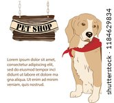 pet shop desk with beagle dog... | Shutterstock .eps vector #1184629834