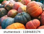 heap of big dirty pumpkins | Shutterstock . vector #1184683174
