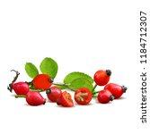 beautiful fragrant rosehip.... | Shutterstock .eps vector #1184712307