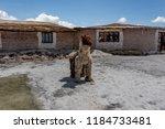 salar de uyuni  bolivia  march...   Shutterstock . vector #1184733481