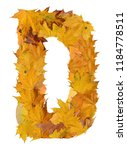 letter from autumn leaves | Shutterstock . vector #1184778511