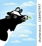 .black and white cow with a... | Shutterstock .eps vector #1184907997