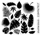 set of leaves silhouettes... | Shutterstock .eps vector #1184967817