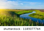 sunny summer landscape with... | Shutterstock . vector #1185077764
