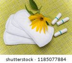 hygienic pads and tampons. the... | Shutterstock . vector #1185077884