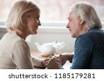 happy loving senior middle aged ... | Shutterstock . vector #1185179281