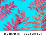 multicolored autumn leaf on a...   Shutterstock . vector #1185309634