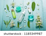 shampoo  shower gel  essential... | Shutterstock . vector #1185349987