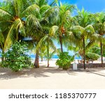 pictorial scene of the tropical ... | Shutterstock . vector #1185370777