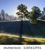 Wonderful Morning Landscape Tree Sun - Fine Art prints