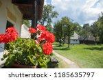 bran  romania   august 15  2018 ... | Shutterstock . vector #1185635797