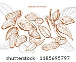 isolated vector collection of... | Shutterstock .eps vector #1185695797
