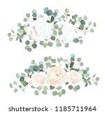 silver dollar eucalyptus  white ... | Shutterstock .eps vector #1185711964
