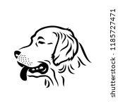 golden retriever dog   isolated ... | Shutterstock .eps vector #1185727471
