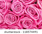 Stock photo background image of pink roses 118574491