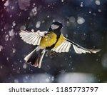bird in flight. snowflakes... | Shutterstock . vector #1185773797