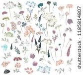 huge collection of florals ...   Shutterstock .eps vector #1185814807