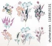 collection of vector flower... | Shutterstock .eps vector #1185815131