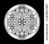 flower of life   intersecting... | Shutterstock .eps vector #1185892387