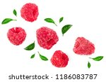 Raspberries With Leaves...