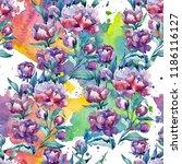 wildflower purple peony flower... | Shutterstock . vector #1186116127