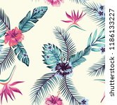 exotic flower hibiscus ... | Shutterstock .eps vector #1186133227