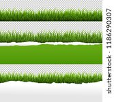 green grass and ripped paper... | Shutterstock . vector #1186290307