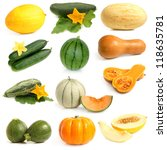 Small photo of Vegetable and fruits collection (Cucurbitales) on a white background