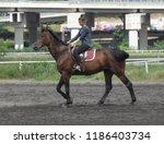 serbia  belgrade   june 23rd... | Shutterstock . vector #1186403734