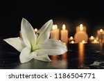 white lily and blurred burning... | Shutterstock . vector #1186504771