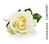 Stock photo single white rose with leaves and stem on white background 118654087