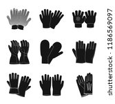 isolated object of glove and... | Shutterstock .eps vector #1186569097
