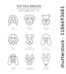 top dog breeds. pet outline... | Shutterstock .eps vector #1186693681