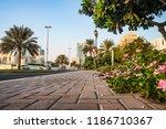 ajman. morning sunny green...   Shutterstock . vector #1186710367