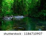 stream rushes through the lush... | Shutterstock . vector #1186710907