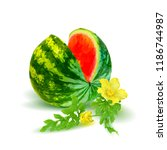 fresh  nutritious and tasty... | Shutterstock .eps vector #1186744987