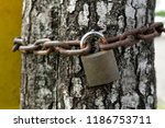 rusty padlock locked on a chain ... | Shutterstock . vector #1186753711