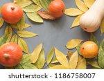 Orange Pumpkins Harvest With...