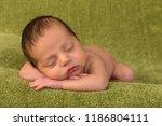 adorable african newborn baby... | Shutterstock . vector #1186804111