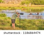 northern botswana   september...   Shutterstock . vector #1186864474