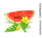 fresh  nutritious and tasty... | Shutterstock .eps vector #1186986241