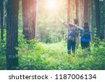 amid the pine forests  young... | Shutterstock . vector #1187006134