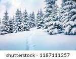 frosty winter morning in... | Shutterstock . vector #1187111257