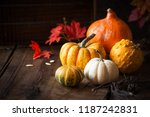 Autumnal Composition For...