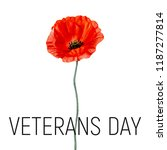 veterans day card with poppy... | Shutterstock .eps vector #1187277814