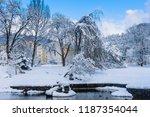 famous spa resort marianske... | Shutterstock . vector #1187354044