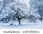 winter in central park  ... | Shutterstock . vector #1187354311
