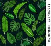 tropical leaves seamless... | Shutterstock .eps vector #1187567161