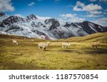 on the routes of peru | Shutterstock . vector #1187570854