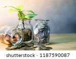 green plant growing out of... | Shutterstock . vector #1187590087